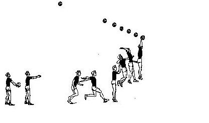 Podacha v voleibole